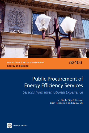 Public Procurement of Energy Efficiency Services